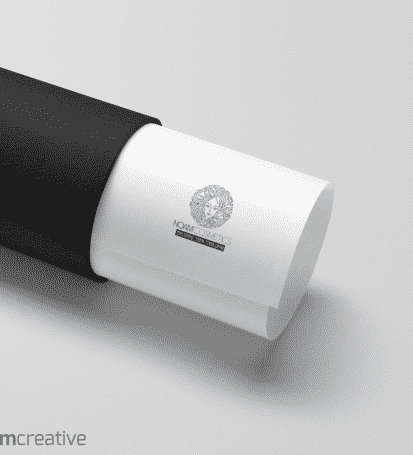 עיצוב לוגו - נועם קוסמטיקס